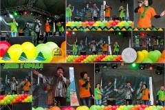 den-goroda-2013-1