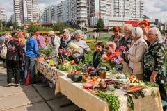 prazdnik-urojaya-2014-047