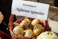 Prazdik-urozhaya-2018-Lobanov-2