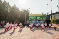 Den-molodezhi-2019-013